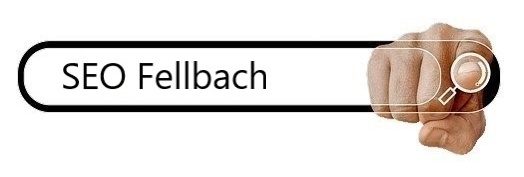 """""""SEO Fellbach"""" als Fallbeispiel 2 1"""